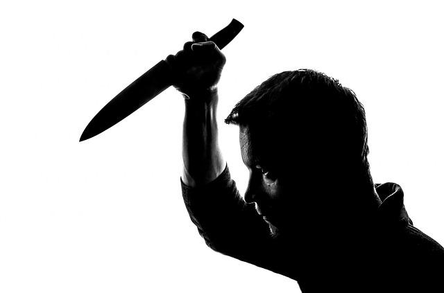 vrah s kudlou.jpg