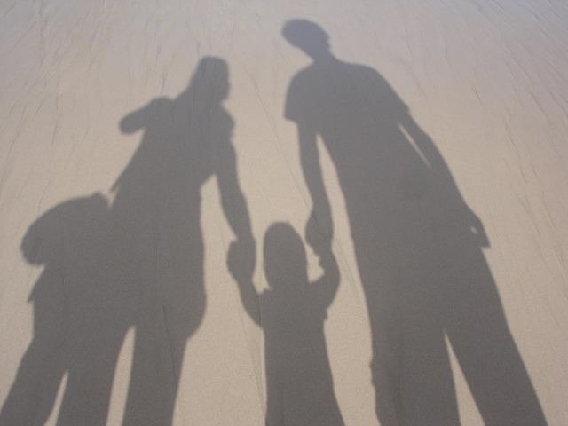 stín rodiny.jpg