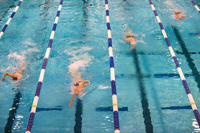 plavání soutěž